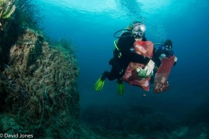 Divers carrying plastic waste underwater