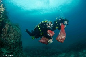 Divers carrying waste