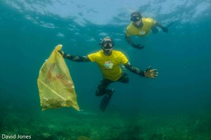 Freedivers collecting plastic waste