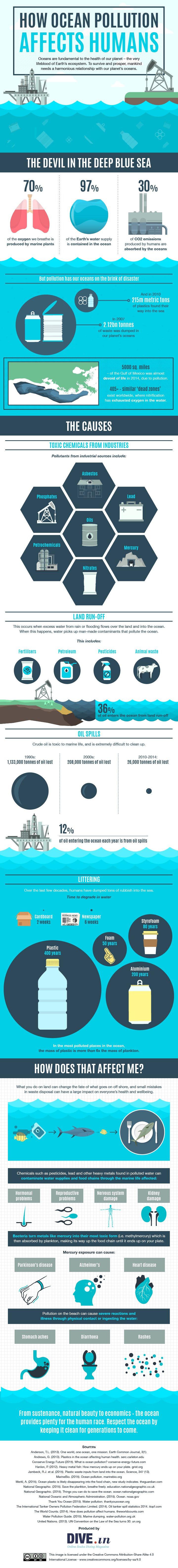 DiveIn infographic
