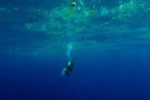 Sri Lanka - diver and waste