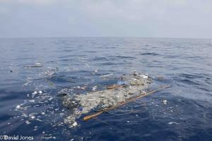 Sri Lanka - plastic pollution 30 miles offshore