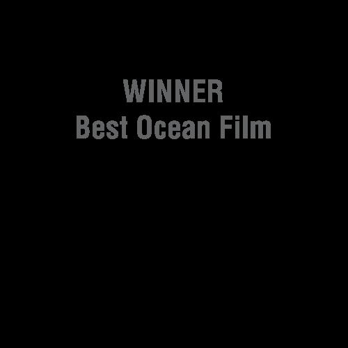 Blue Ocean Film Festival Laurel