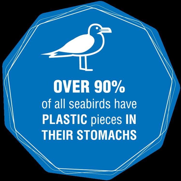 Rethink Plastic Save Our Seas Plastic Oceans Foundation