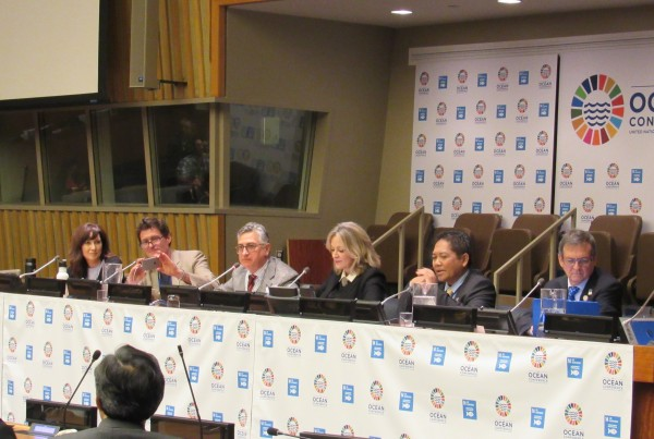 Panel discussion for A Plastic Ocean at the United Nations