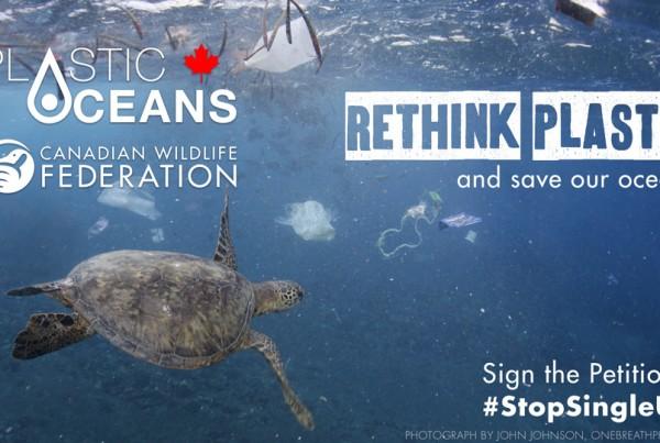 Canadian Wildlife Federation #StopSingleUse plastic campaign