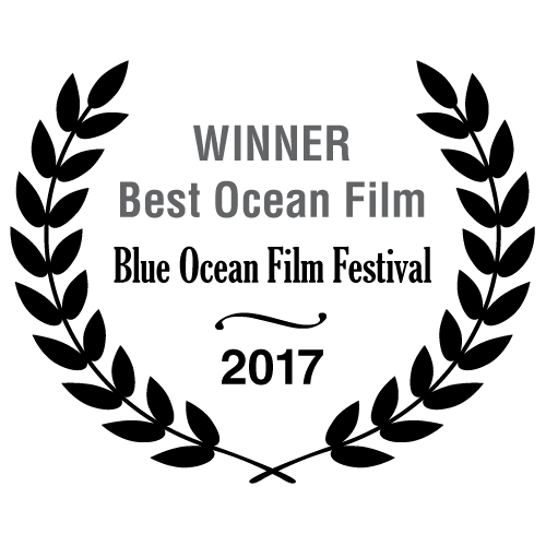 Winner Best Ocean Film - Blue Ocean Film Festival 2017
