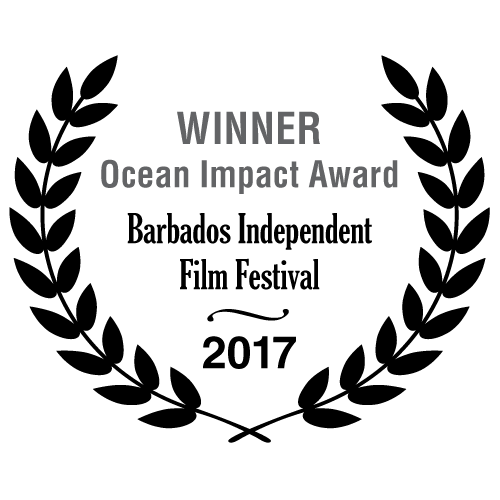 Winner Ocean Impact Award - Barbados Independent Film Festival 2017