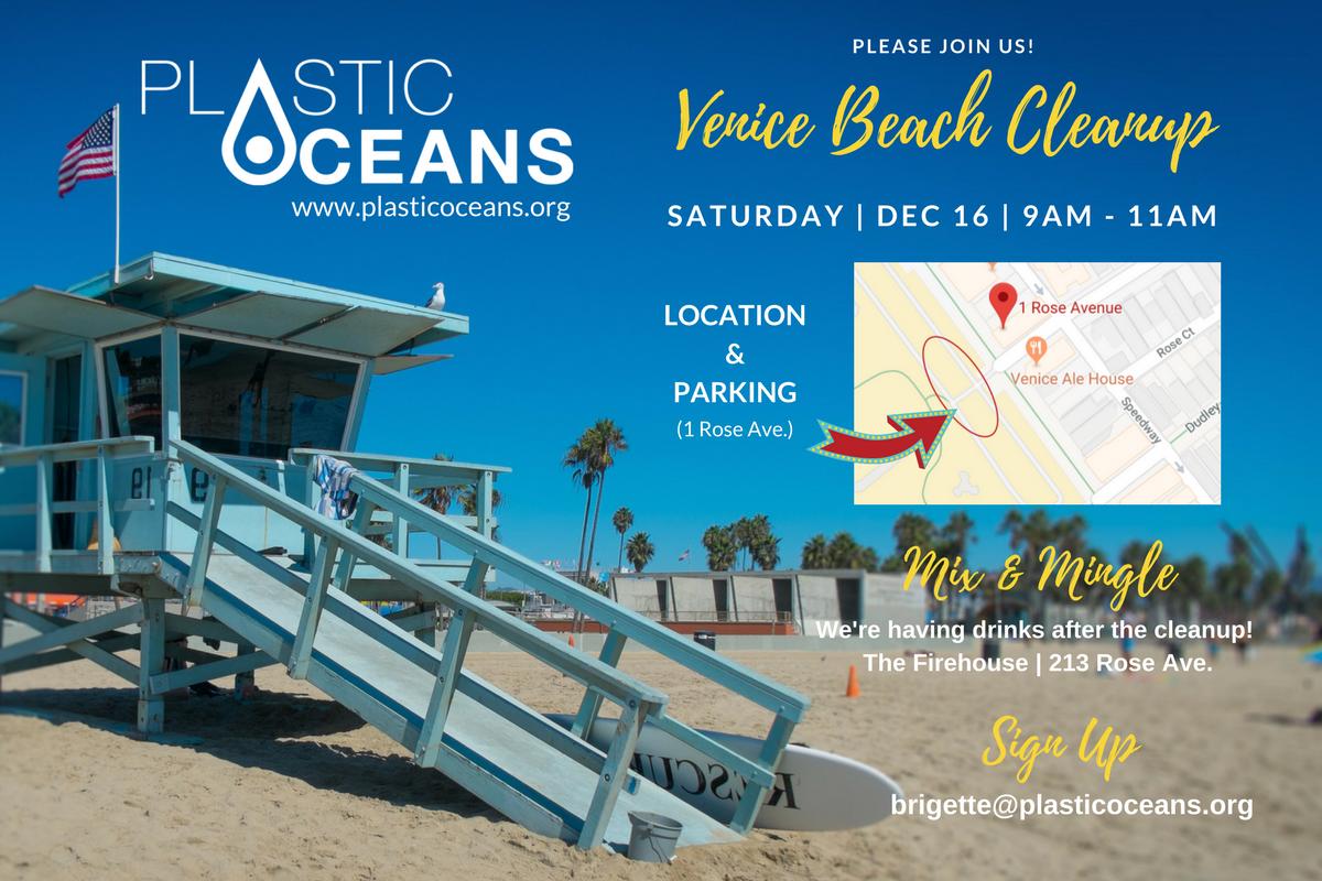 Venice Beach Cleanup