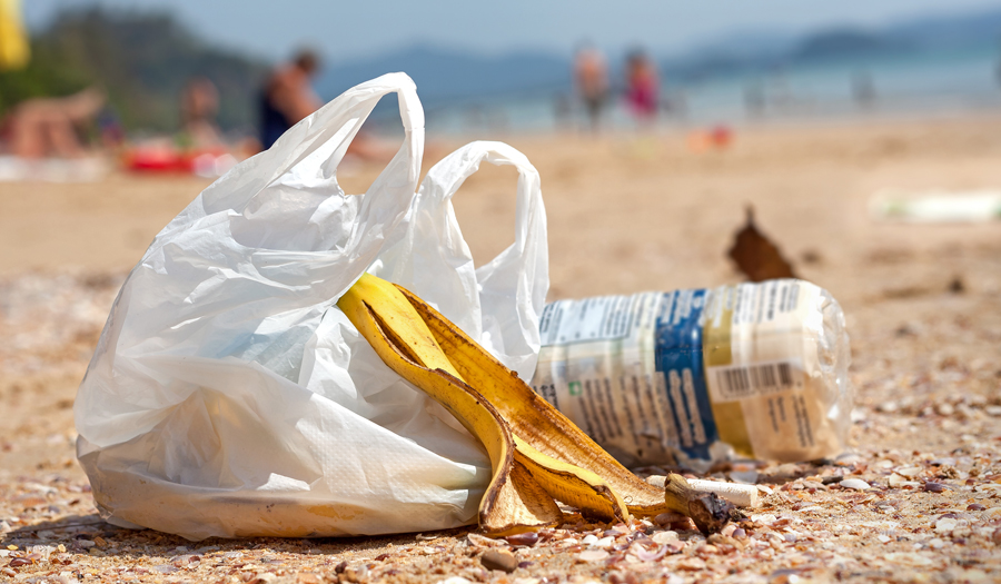 Top 5 Reasons To Ditch The Plastic Bag Oceans