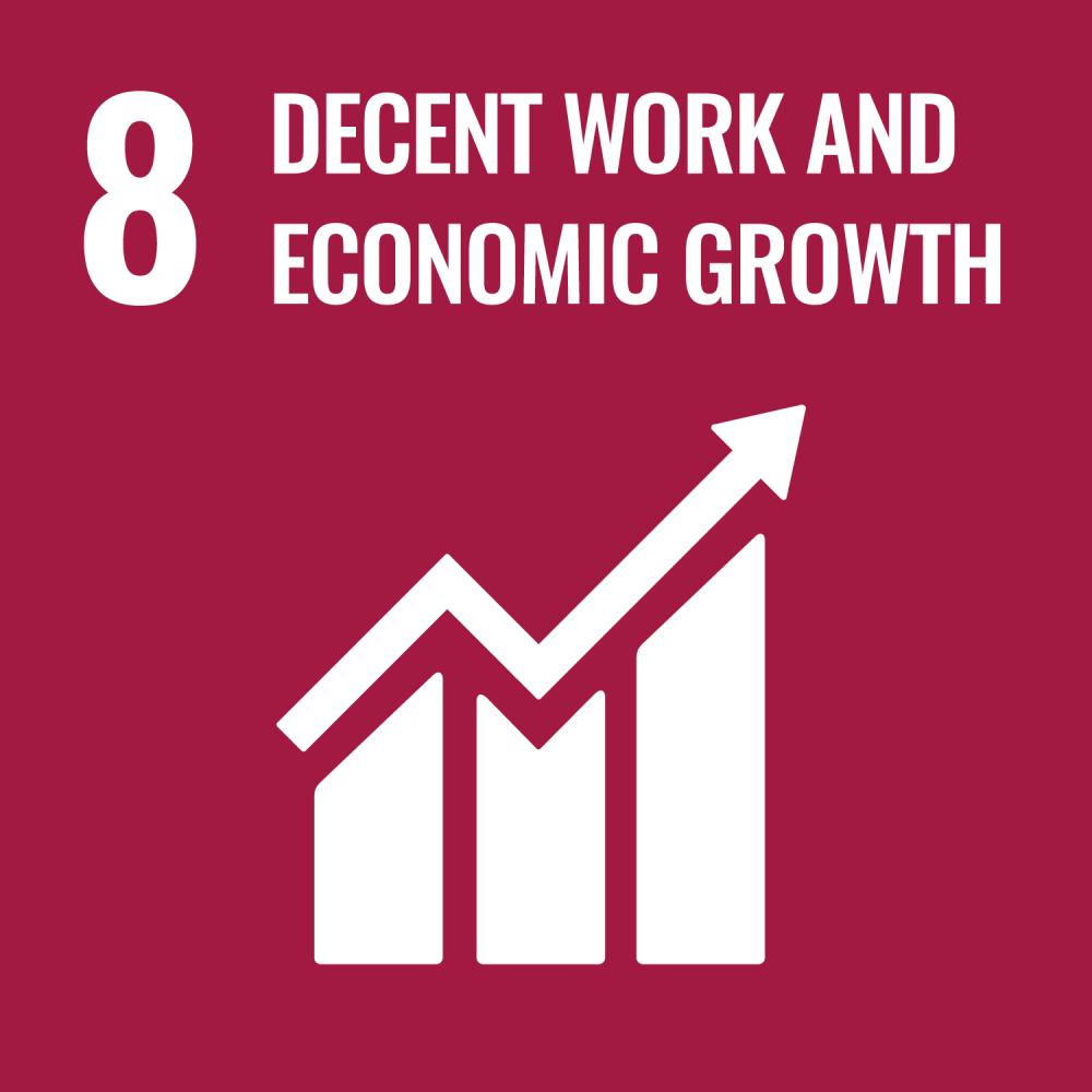 UN SDG 8