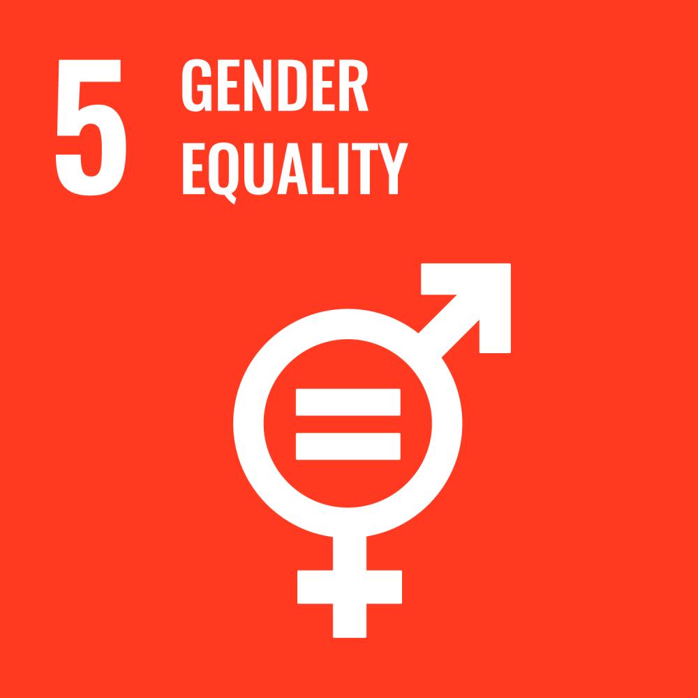 UN SDG gender eqaulity